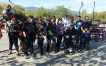 Au Poney club, la passion de l'équitation en partage